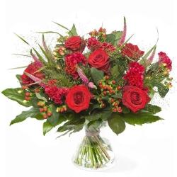Rijkelijk rode roos